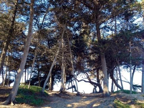 Grover Beach Boardwalk
