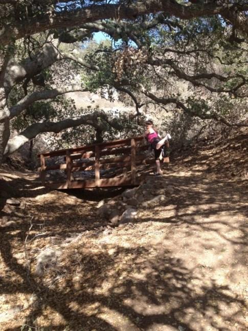Week 12 - Lemon Grove Loop