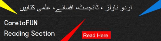 novel in urdu
