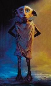 Dobby in rags