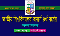 Nu Honours 4th Year Result 2018