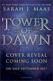 Sarah J Maas - Tower of Dawn