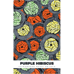 chimamanda adichie book covers - narrative landscape