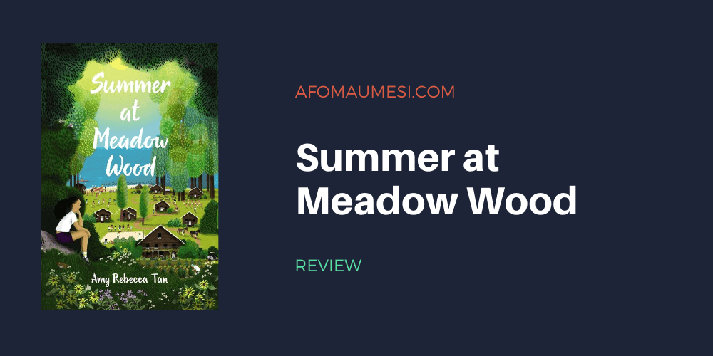 Summer at Meadow Wood book review - amy rebecca tan