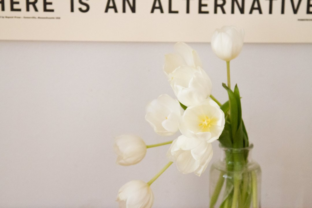 tulips_reading_my_tea_leaves_IMG_7354