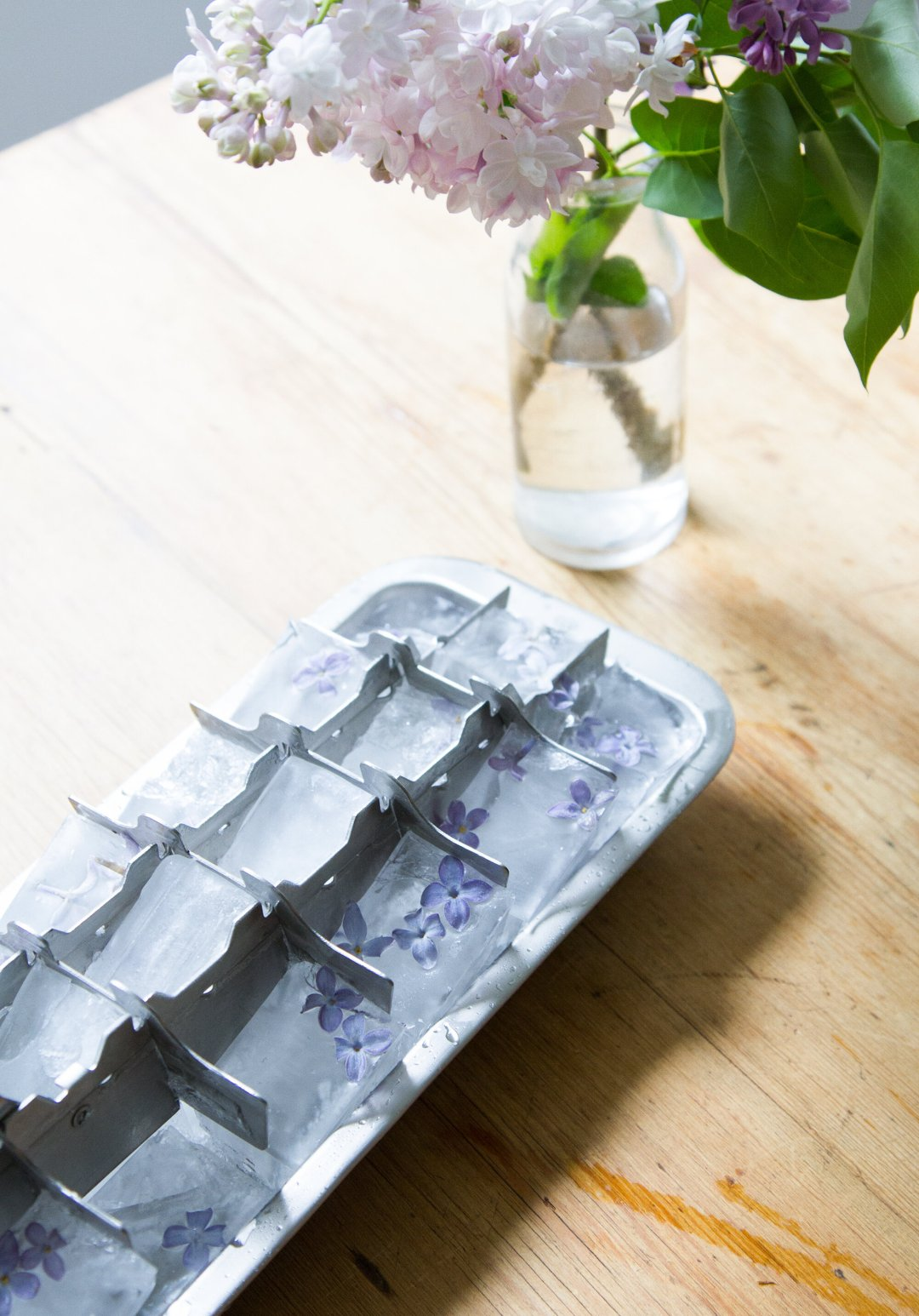 lilac ice cubes gone wrong   reading my tea leaves