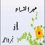 Mehr Un Nisa Novel By Nimra Ahmad Pdf Free