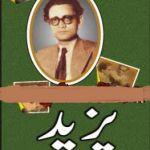 Yazeed Afsane By Saadat Hasan Manto Pdf Download