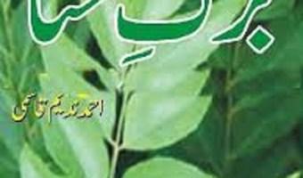 Barg e Hina Afsane By Ahmad Nadeem Qasmi Pdf