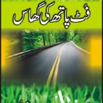 Footpath Ki Ghaas By Bano Qudsia Pdf Download