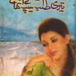 Teri Talab Ke Seep Uthaye Novel By Aasia Mirza Pdf