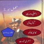 Asli Waris Novel Urdu By MA Rahat Pdf