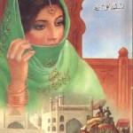Sultan Bahlol Lodhi Novel By Aslam Rahi Pdf