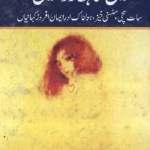 Main Gunahgar Tou Nahi Novel By Inayatullah Pdf