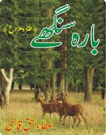 Barah Singhay Urdu By Ata Ul Haq Qasmi Pdf