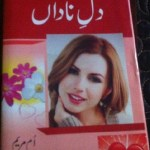 Dil e Nadan Novel By Umme Maryam Pdf Download