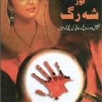 Sheesha Aur Shah Rag By Dabir Hussain Rizvi Pdf