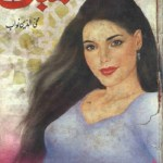 Kambal Novel By Mohiuddin Nawab Pdf Download