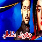 Chotay Sultan Novel By Muhammad Shoaib Pdf