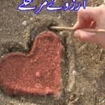Aarzoo Ke Marhalay By Mehmood Ahmad Moodi Pdf