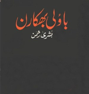 Bauli Bhikaran Travelogue Book By Bushra Rehman