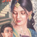 Basaira Novel By Anwar Aligi Pdf Download