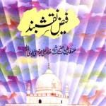 Faiz e Naqshband Urdu By Abdul Hakeem Akhtar Pdf