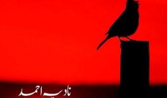 Dhal Gaya Hijar Ka Din Novel By Nadia Ahmad Pdf