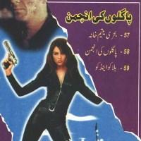 Paglon Ki Anjuman Imran Series Jild 17 By Ibne Safi Pdf