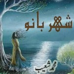 Shehar Bano Urdu Novel By Muhammad Shoaib Pdf