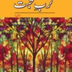 Karb e Mohabbat Novel By Fehmi Firdous Pdf