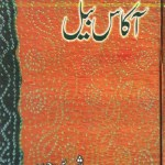 Akas Bail Novel By Shireen Haider Pdf Download