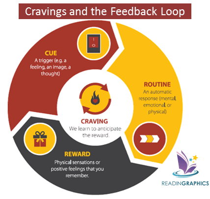 The Power of Habits summary_The Habit Loop