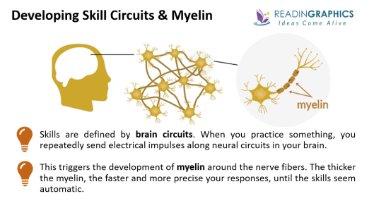 The Talent Code summary_Myelin and skills circuits