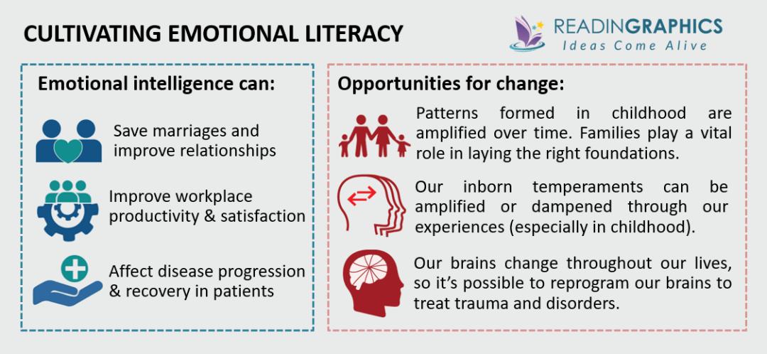 Emotional Intelligence summary - Develop Emotional Literacy