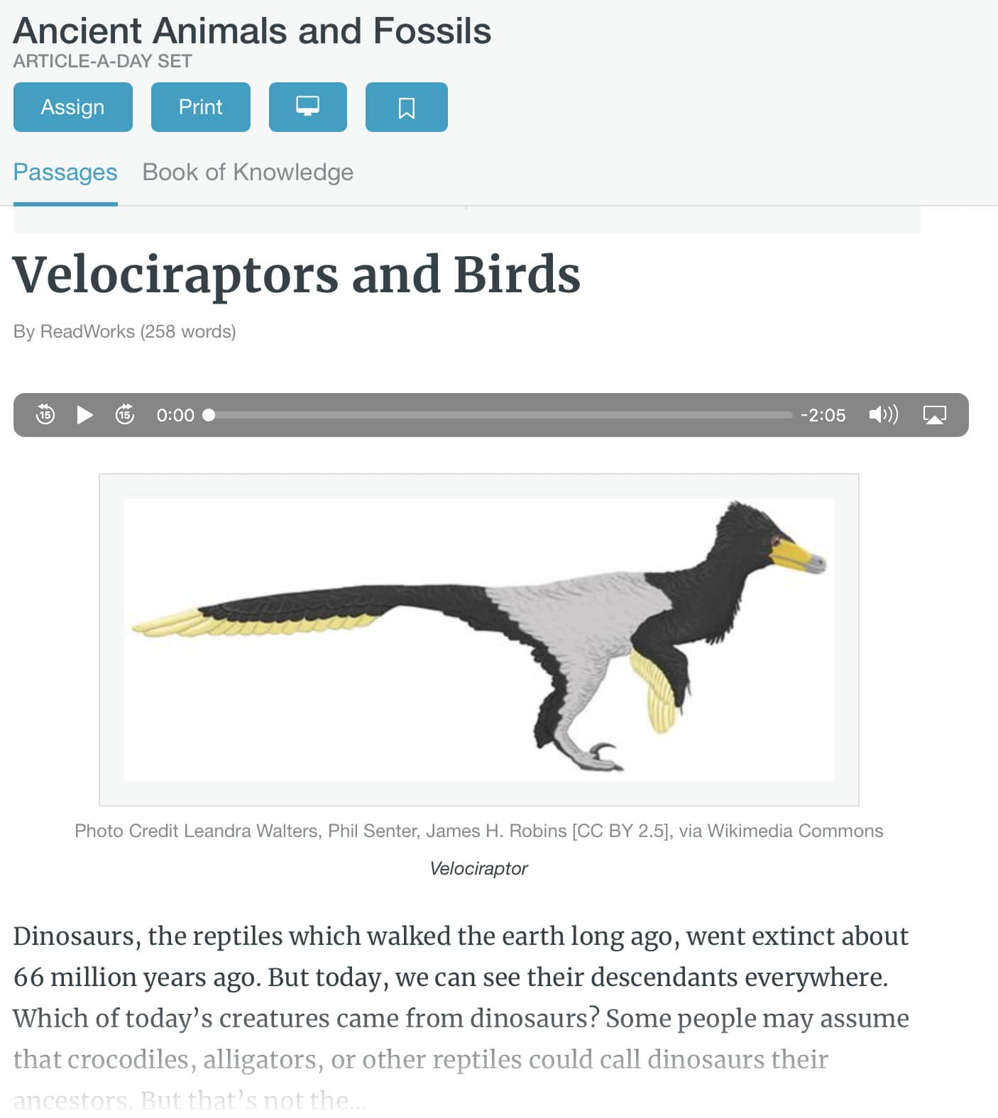 velociraptors and birds