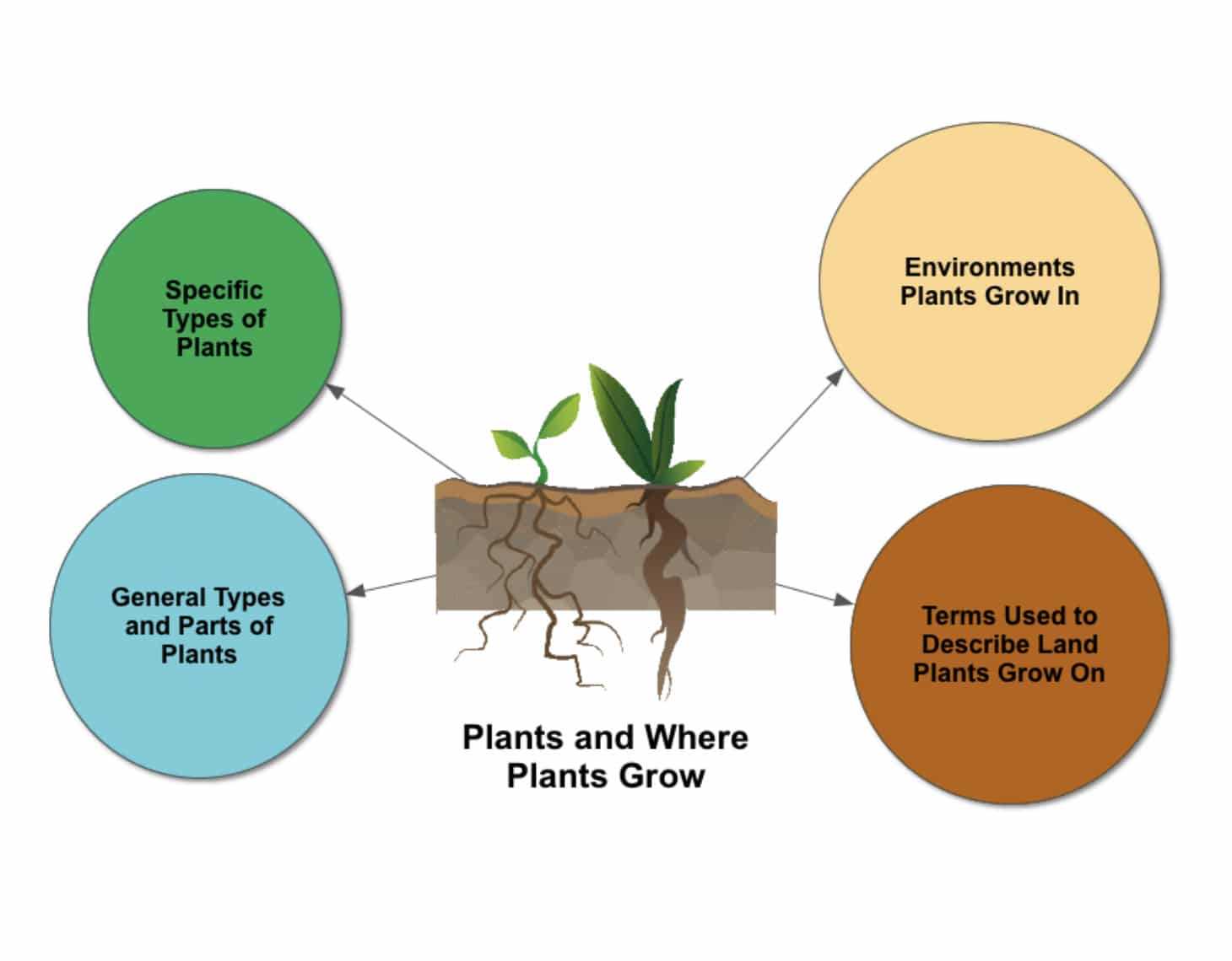 Plants and where plants grow