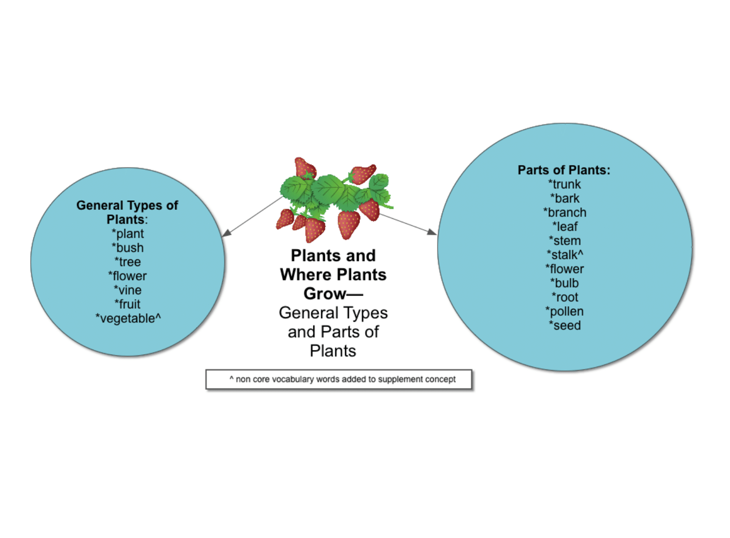 General types and parts of plants