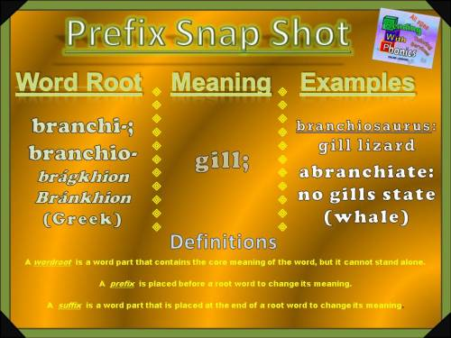 branchi-branchio-prefix-snap-shot