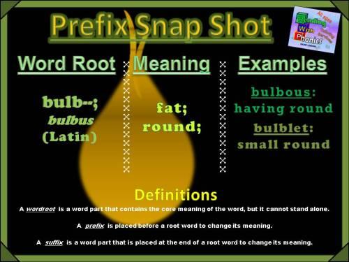 bulb-prefix-snap-shot