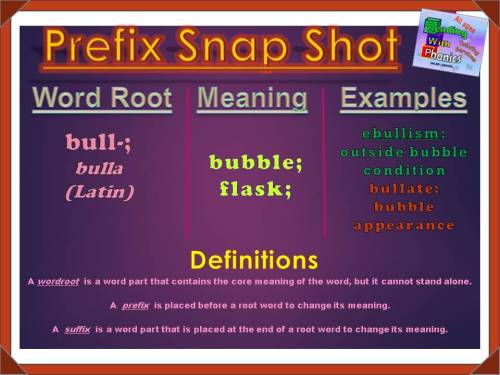 bull-prefix-snap-shot