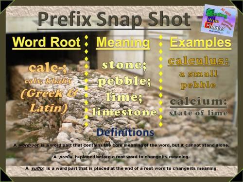 calc-prefix-snap-shot