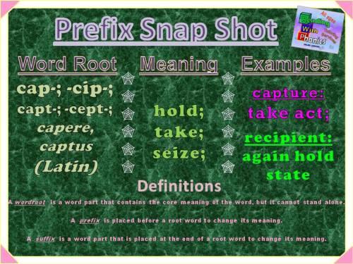 cap-cip-capt-cept-prefix-snap-shot