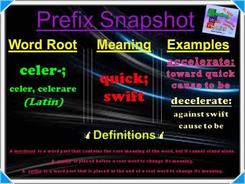 celer-prefix-snapshot