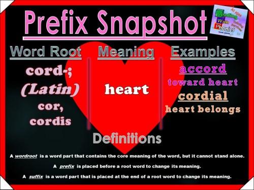 cord- Prefix Snapshot