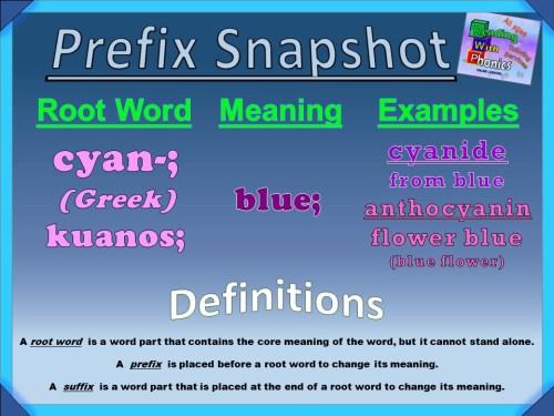 cyan- Prefix Snapshot