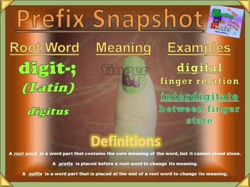 digit- Prefix Snapshot