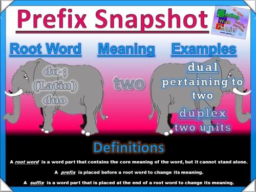 du- Prefix Snapshot