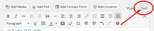 wordpress text editor