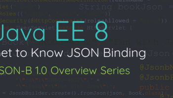 What is JSON Processing (JSON-P API)?
